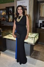 at Mahesh Notandas store for festive collection launch on 23rd Oct 2015
