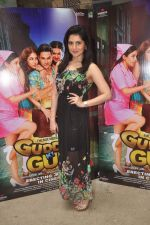 at Guddu I gun screening on 25th Oct 2015