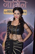 Adaa Khan at Naagin launch for Colors in Powai on 26th Oct 2015 (16)_562f720a7fb32.JPG
