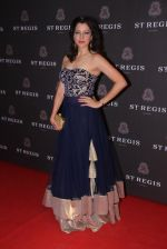 Aditi Gowitrikar at St Regis opening ceremony on 6th Nov 2015 (174)_563de8398390d.JPG