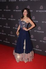 Aditi Gowitrikar at St Regis opening ceremony on 6th Nov 2015 (176)_563de83b152c9.JPG