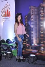 at Town Centre launch on 8th Nov 2015
