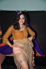 Arshi Khan photo shoot on 17th Nov 2015 (1)_564c29ceaa075.JPG