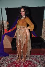 Arshi Khan photo shoot on 17th Nov 2015 (9)_564c29d425d34.JPG