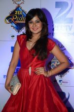 at Zee Rishtey Awards in Mumbai on 21st Nov 2015 (430)_56515edd6f57e.JPG
