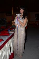 at pet adoption in Juhu on 21st Nov 2015