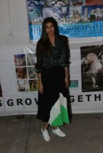 Athiya Shetty at pet adoption in Juhu on 21st Nov 2015