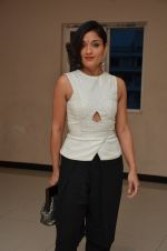 Sandhya Mridul  at Angry Indian Goddess press meet on 22nd Nov 2015  (3)_5652dd23117d5.JPG