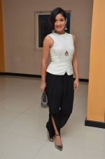 Sandhya Mridul  at Angry Indian Goddess press meet on 22nd Nov 2015  (6)_5652dd25e613d.JPG