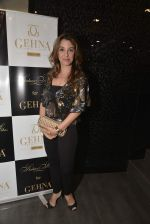 Perizaad Kolah at Shaheen Abbas collection launch in Gehna Store on 24th Nov 2015 (300)_5655606eaefc3.JPG