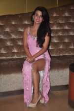 Naina Aswal at ishq  sarfira movie launch on 25th Nov 2015 (30)_5656b66fbdb4f.JPG