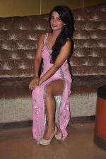 Naina Aswal at ishq  sarfira movie launch on 25th Nov 2015 (32)_5656b67112300.JPG
