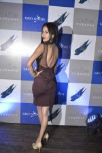 Ayra Dastur at Couture Cabana hosted at Asilo on 27th Nov 2015