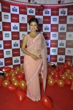 Debina at ABP Saas Bahu Aur Saazish show anniversary on 27th Nov 2015 (30)_565b05d0f181e.JPG
