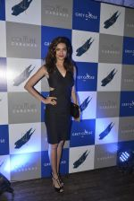 Karishma Tanna at Couture Cabana hosted at Asilo on 27th Nov 2015 (92)_565b05352dd82.JPG