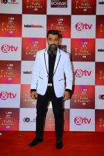 Ajaz Khan at Indian telly awards red carpet on 28th Nov 2015 (435)_565c395dba36f.JPG