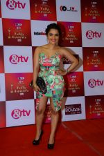 Chitrashi Rawat at Indian telly awards red carpet on 28th Nov 2015 (283)_565c3a1c07201.JPG