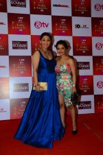 Chitrashi Rawat at Indian telly awards red carpet on 28th Nov 2015 (289)_565c3a1f6f45c.JPG