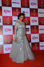 Divyanka Tripathi at Indian telly awards red carpet on 28th Nov 2015 (616)_565c3a4645ec8.JPG