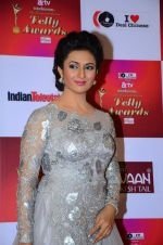 Divyanka Tripathi at Indian telly awards red carpet on 28th Nov 2015 (617)_565c3a4868609.JPG