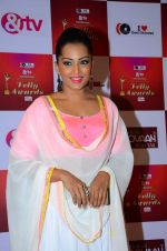 Meghna Naidu at Indian telly awards red carpet on 28th Nov 2015 (57)_565c3b416e740.JPG
