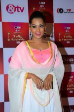 Meghna Naidu at Indian telly awards red carpet on 28th Nov 2015 (58)_565c3b426fec8.JPG
