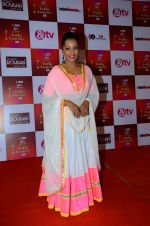 Meghna Naidu at Indian telly awards red carpet on 28th Nov 2015 (62)_565c3b46bfed7.JPG
