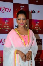 Meghna Naidu at Indian telly awards red carpet on 28th Nov 2015 (64)_565c3b492c32d.JPG