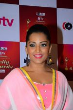 Meghna Naidu at Indian telly awards red carpet on 28th Nov 2015 (67)_565c3b4c8e6fc.JPG