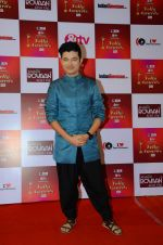 Meiyang Chang at Indian telly awards red carpet on 28th Nov 2015 (408)_565c3b465b128.JPG