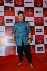 Meiyang Chang at Indian telly awards red carpet on 28th Nov 2015 (409)_565c3b476daa7.JPG
