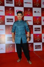 Meiyang Chang at Indian telly awards red carpet on 28th Nov 2015 (410)_565c3b4896e0a.JPG