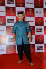 Meiyang Chang at Indian telly awards red carpet on 28th Nov 2015 (411)_565c3b49b211f.JPG