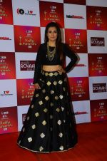 Mini Mathur at Indian telly awards red carpet on 28th Nov 2015 (683)_565c3ab2e98d0.JPG