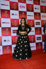 Mini Mathur at Indian telly awards red carpet on 28th Nov 2015 (684)_565c3ab400d8a.JPG