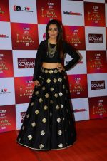 Mini Mathur at Indian telly awards red carpet on 28th Nov 2015 (688)_565c3ab8ee6de.JPG