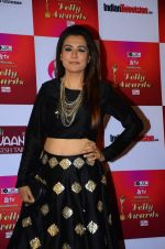 Mini Mathur at Indian telly awards red carpet on 28th Nov 2015 (689)_565c3ab9e6591.JPG