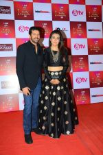 Mini Mathur, Kabir Khan at Indian telly awards red carpet on 28th Nov 2015 (668)_565c3abe8e955.JPG