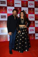 Mini Mathur, Kabir Khan at Indian telly awards red carpet on 28th Nov 2015 (677)_565c3ac47ef9f.JPG