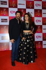 Mini Mathur, Kabir Khan at Indian telly awards red carpet on 28th Nov 2015 (678)_565c3ac571ae5.JPG
