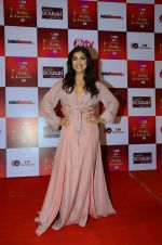 Pallavi Sharda at Indian telly awards red carpet on 28th Nov 2015 (121)_565c3b706cd5a.JPG
