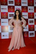 Pallavi Sharda at Indian telly awards red carpet on 28th Nov 2015 (123)_565c3b73108ba.JPG
