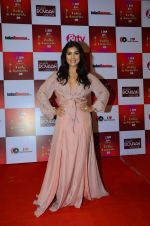 Pallavi Sharda at Indian telly awards red carpet on 28th Nov 2015 (124)_565c3b741346a.JPG