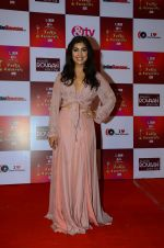 Pallavi Sharda at Indian telly awards red carpet on 28th Nov 2015 (127)_565c3b769eb38.JPG