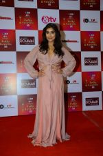 Pallavi Sharda at Indian telly awards red carpet on 28th Nov 2015 (129)_565c3b782902d.JPG