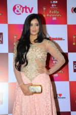 Shweta Tiwari at Indian telly awards red carpet on 28th Nov 2015 (726)_565c3c1ce4857.JPG