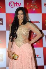 Shweta Tiwari at Indian telly awards red carpet on 28th Nov 2015 (728)_565c3c1e3727b.JPG