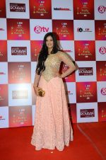 Shweta Tiwari at Indian telly awards red carpet on 28th Nov 2015 (729)_565c3c1ec409e.JPG