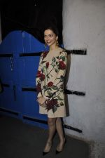Deepika Padukone at Tamasha success bash on 30th Nov 2015