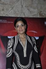 Sandhya Mridul at great indian goddess screening on 30th Nov 2015 (9)_565d987712520.JPG